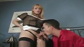 Tranny concomitant and young boss